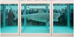 Damien Hirst, shark in formaldehyde